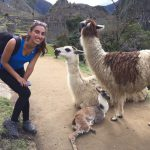 Volunteer in Peru Llama Love